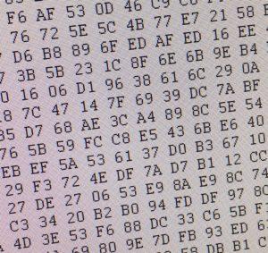 デジカメのSDカード画像データ2,000枚復元